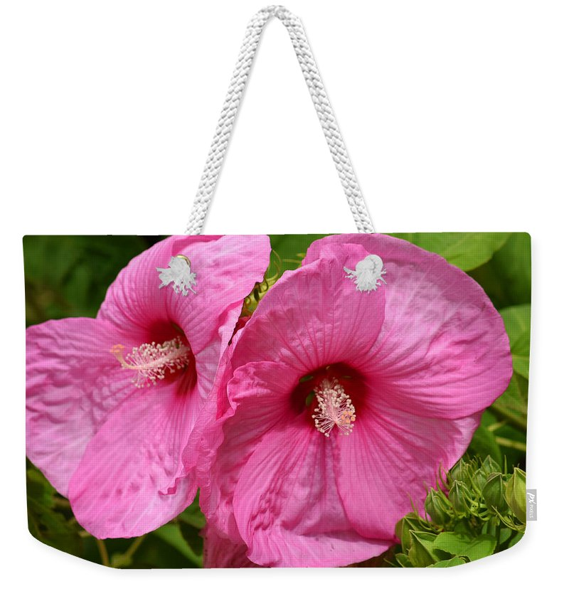 Flowers Weekender Tote Bag featuring the photograph Paired In Pink by Maria Keady