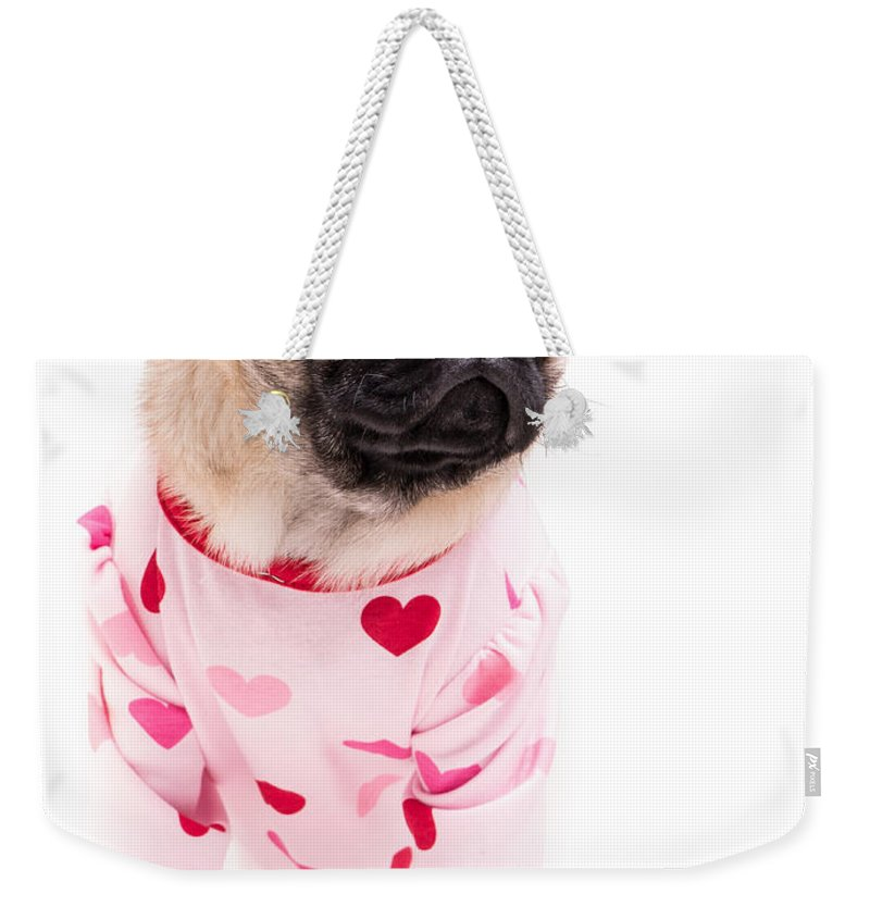 Pug Weekender Tote Bag featuring the photograph Pajama Party by Edward Fielding