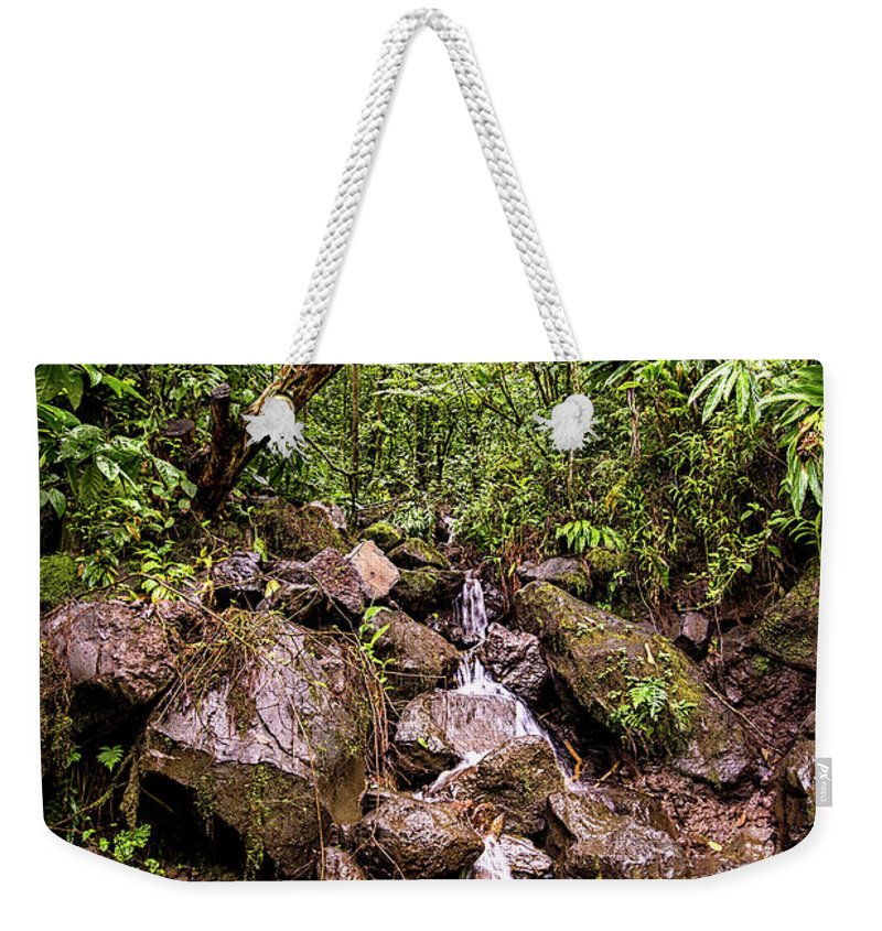 Hiking Along Pipiwai Trail Maui Weekender Tote Bag featuring the photograph Palikes Stream Along Trail by Keith Ducker