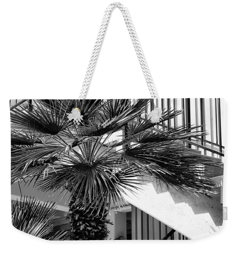 Palm Weekender Tote Bag featuring the photograph Palm Chevron Palm Springs by William Dey