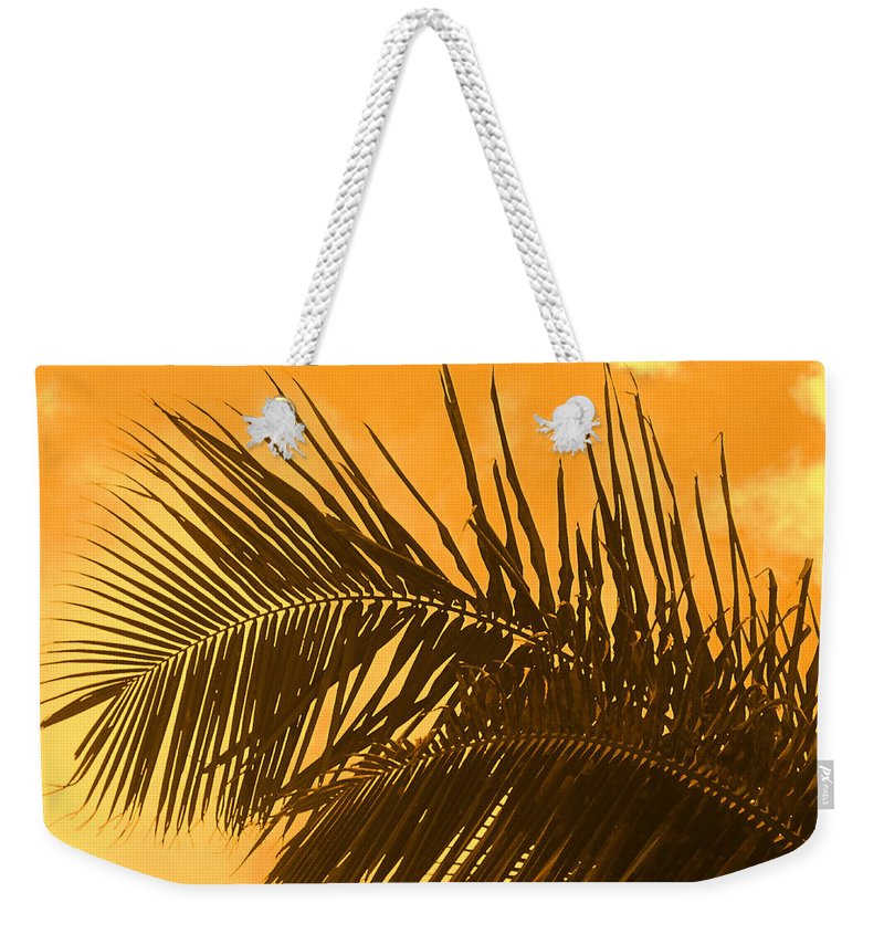 Palm Weekender Tote Bag featuring the photograph Palm Frond Sunset by Ian MacDonald