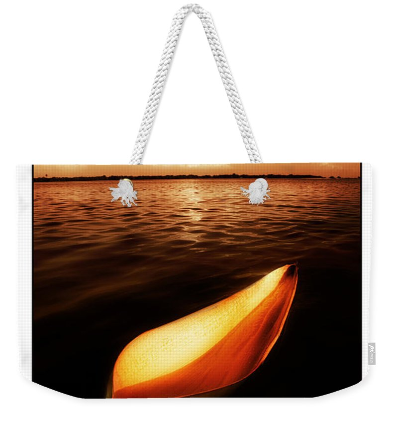 Palm Weekender Tote Bag featuring the photograph Palm Leaf Sheath Boat by Mal Bray