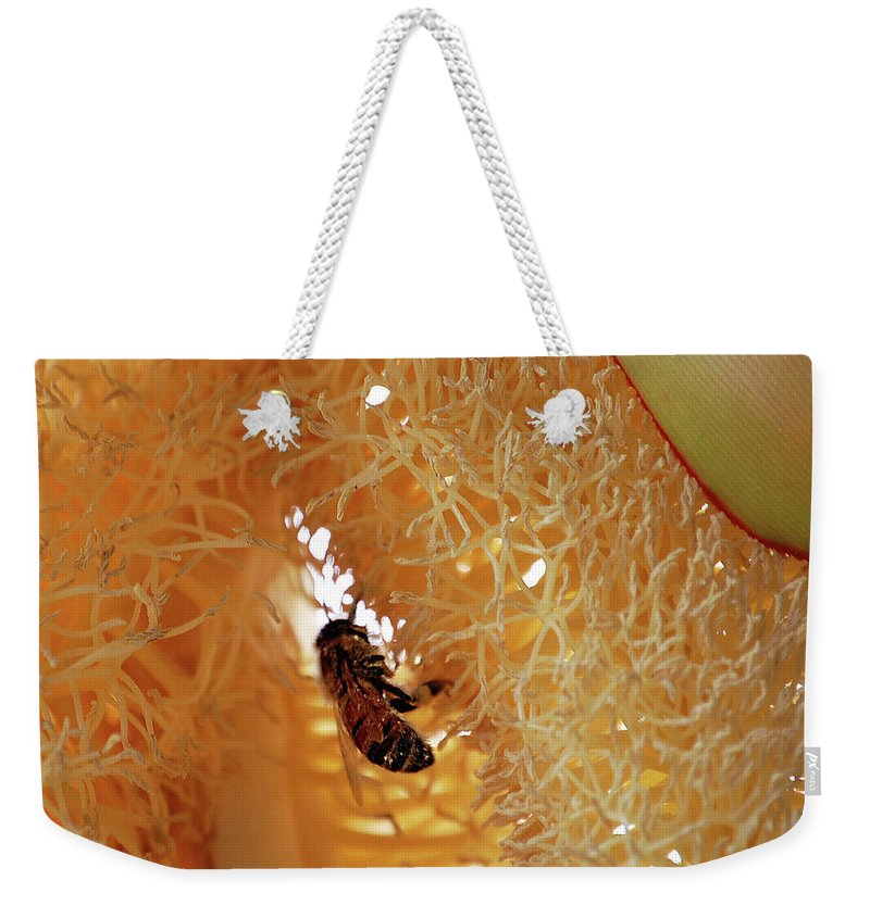 Palm Weekender Tote Bag featuring the digital art Palm Pollination by DigiArt Diaries by Vicky B Fuller