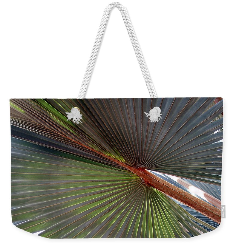 Tree Weekender Tote Bag featuring the photograph Palm by Robert Meanor
