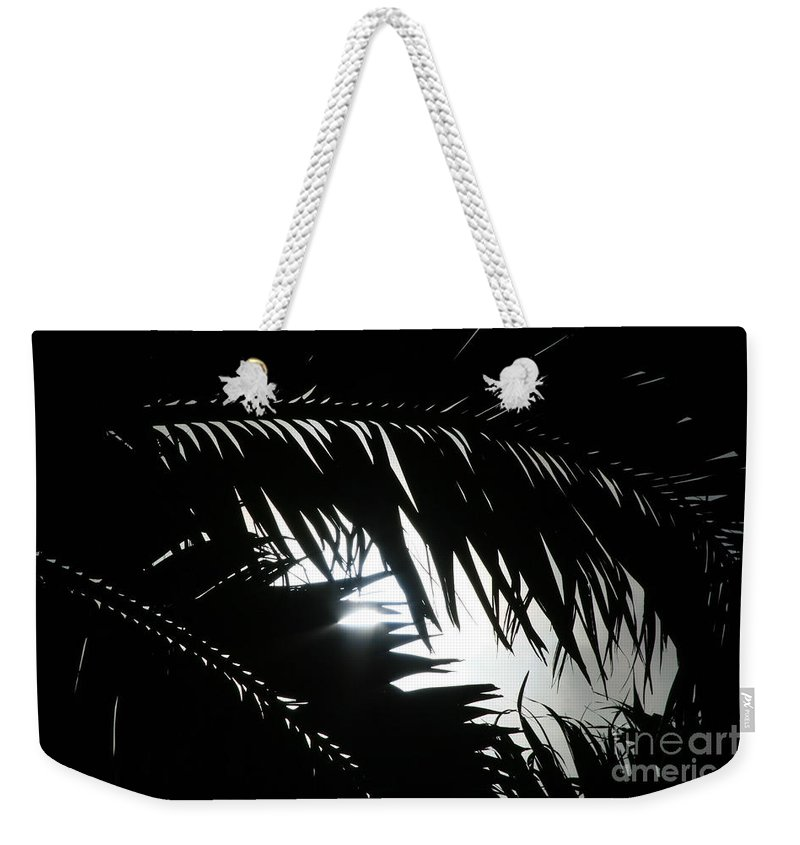 Palm Silhouettes Weekender Tote Bag featuring the photograph Palm Silhouettes Kaanapali by Sharon Mau