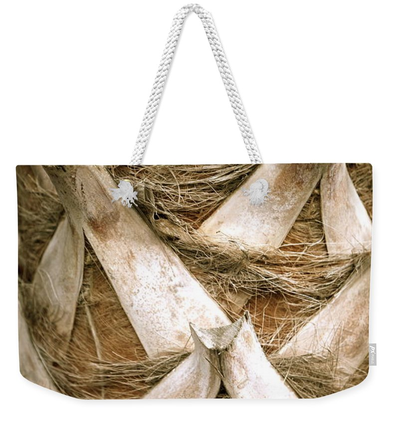 Bark Weekender Tote Bag featuring the photograph Palm Tree Bark by Nadine Rippelmeyer