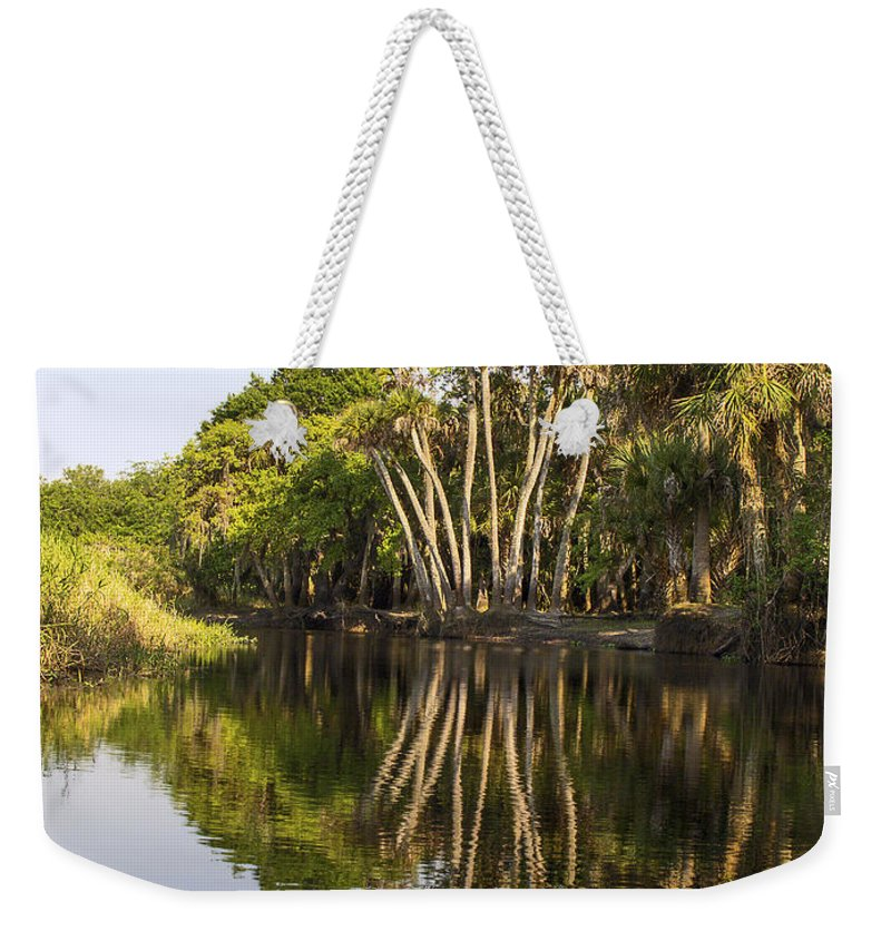 Tall Palm Trees Reflected In Water Weekender Tote Bag featuring the photograph Palm Trees Reflections by Sally Weigand