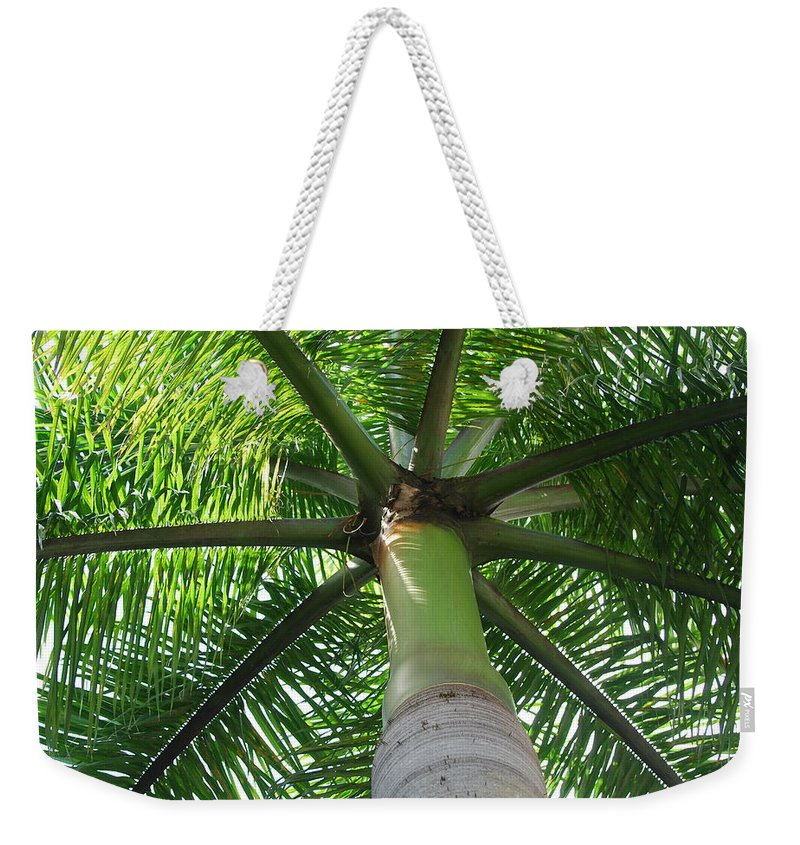 Macro Weekender Tote Bag featuring the photograph Palm Unbrella by Rob Hans