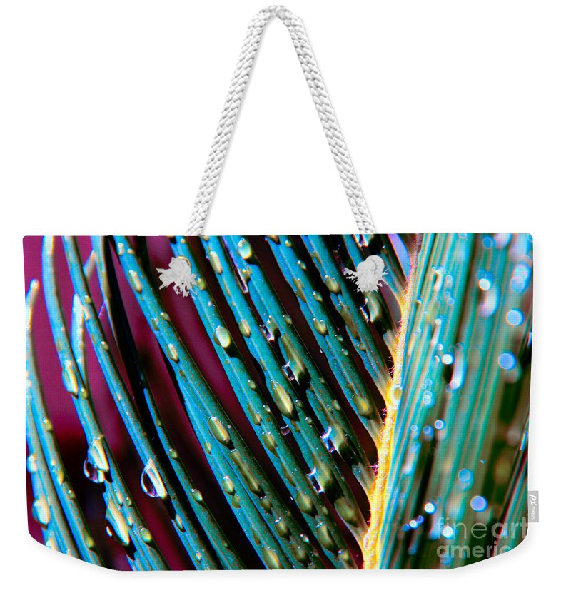 Palm Tree Weekender Tote Bag featuring the photograph Palms After A Rainy Day by Mariola Bitner