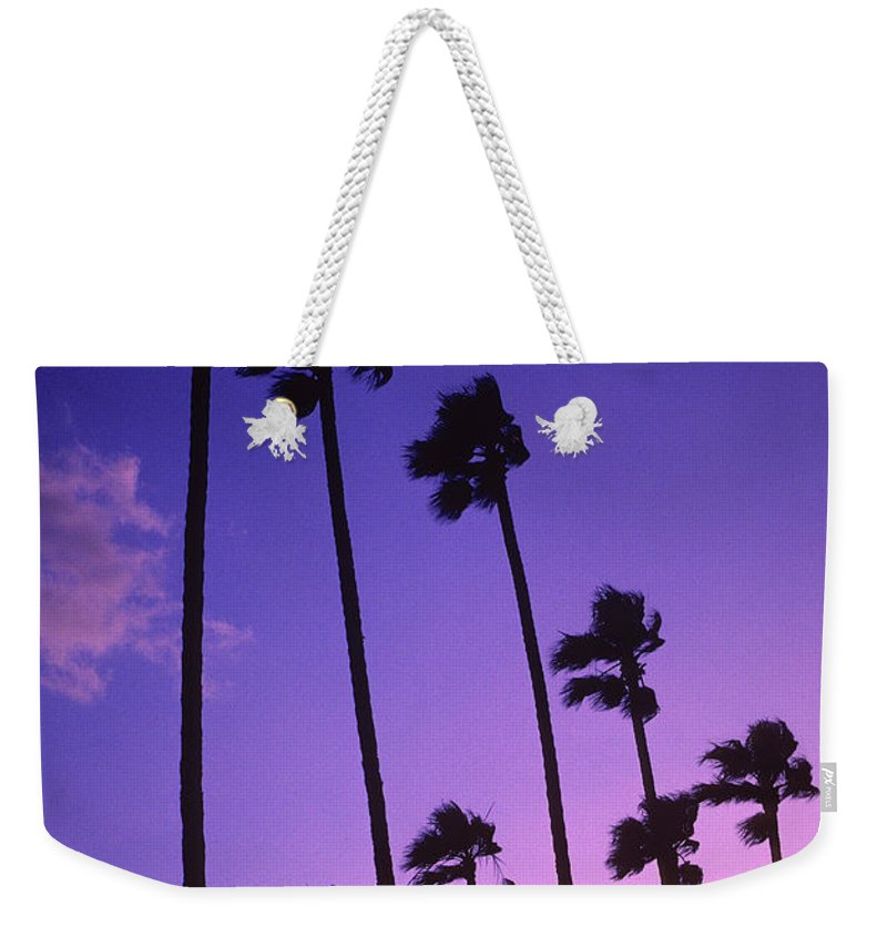 Palm Trees Weekender Tote Bag featuring the photograph Palms by Steve Williams