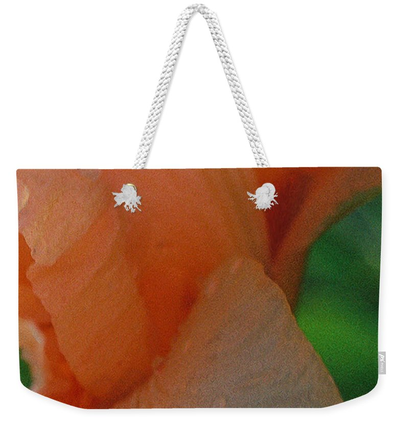 Abstract Weekender Tote Bag featuring the photograph Panel One From Iris by Steve Karol