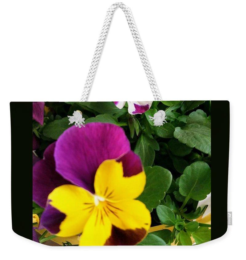 Pansies Weekender Tote Bag featuring the photograph Pansies 3 by Valerie Josi