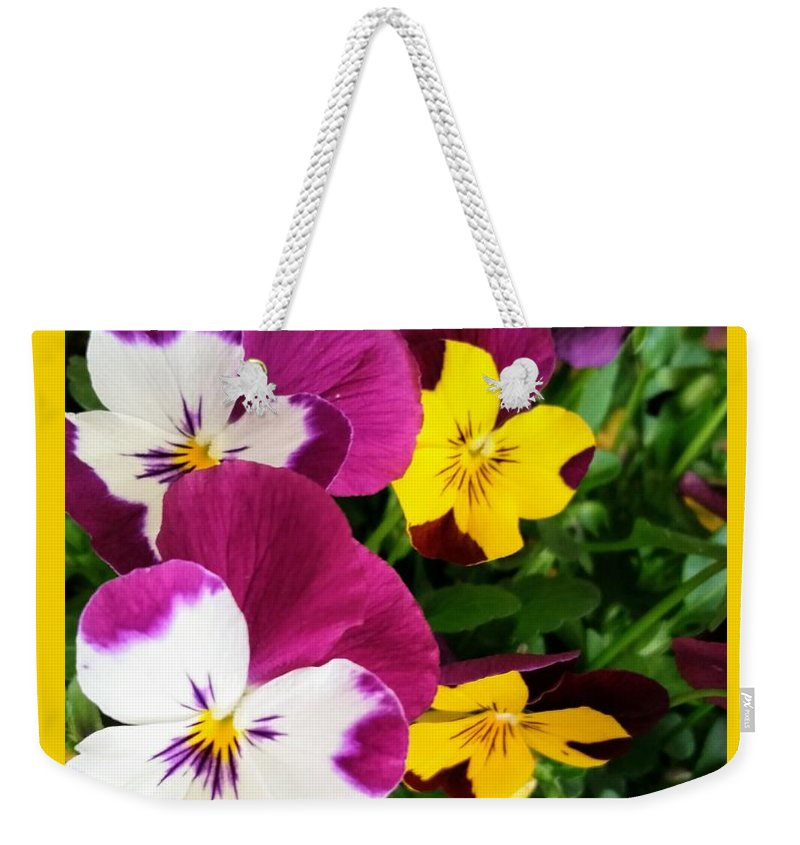 Flowers Weekender Tote Bag featuring the photograph Pansies by Valerie Josi