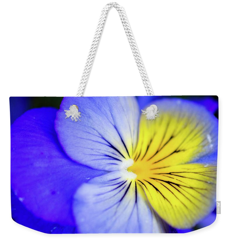 Pansy Weekender Tote Bag featuring the photograph Pansy Close-up Square by Lisa Blake