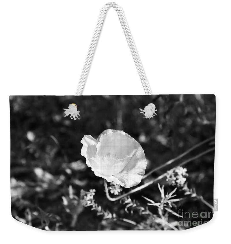 Flowers Weekender Tote Bag featuring the photograph Paper Flower In B And W by Kathy McClure