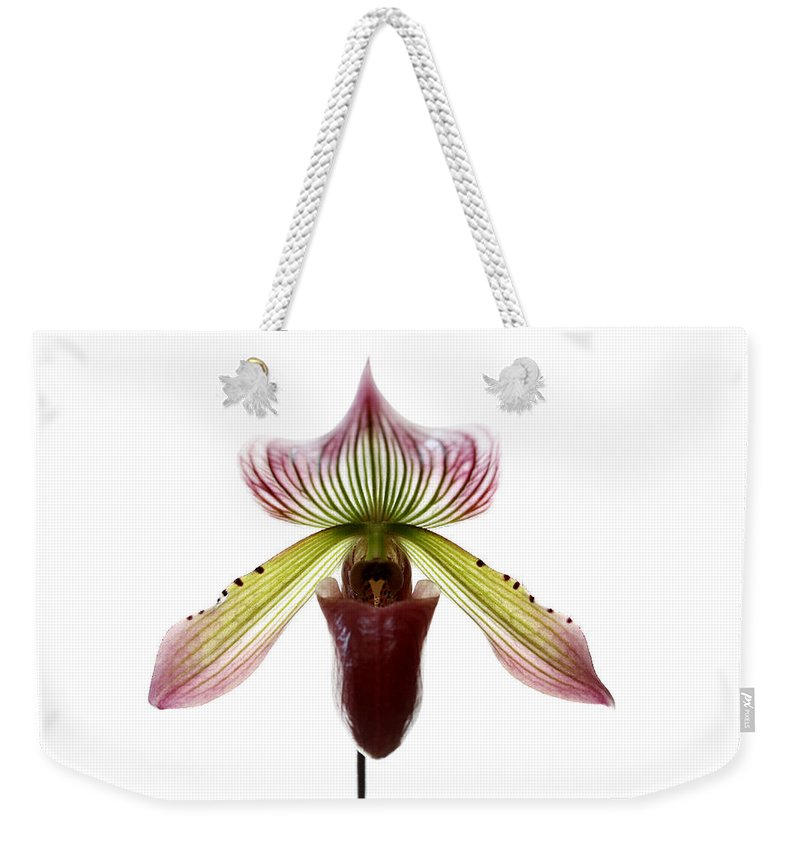 Orchid Weekender Tote Bag featuring the photograph Paphiopedilum Lawrenceanum by Marilyn Hunt