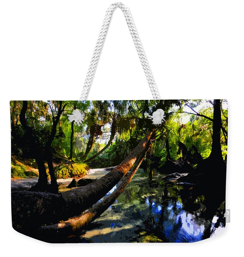Paradise Weekender Tote Bag featuring the painting Paradise Found by David Lee Thompson