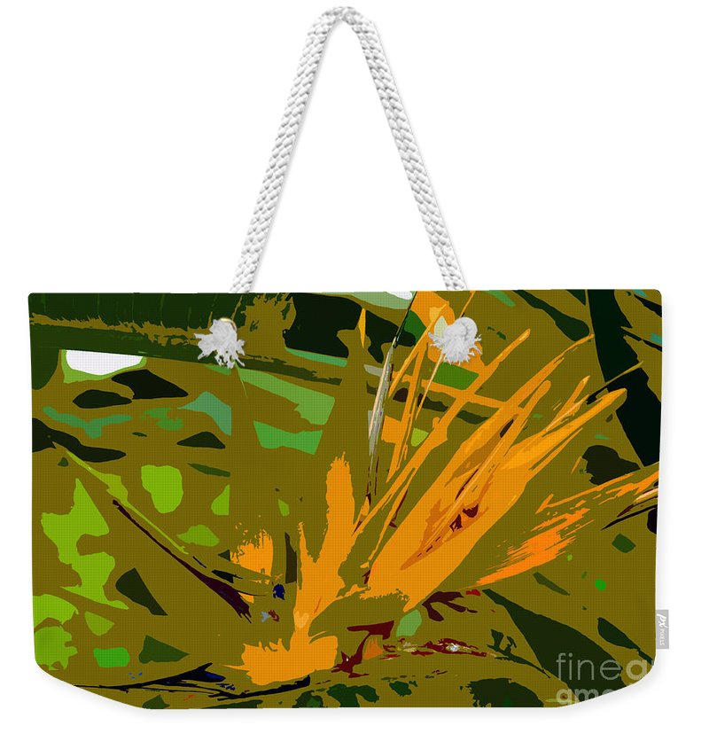 Paradise Weekender Tote Bag featuring the photograph Paradise Work Number 9 by David Lee Thompson