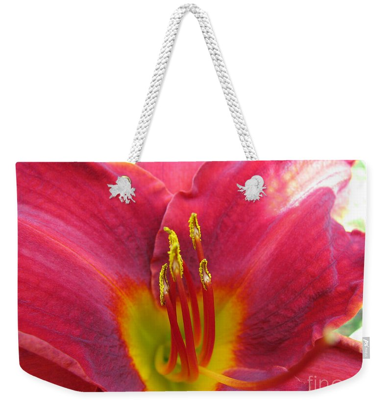 Pardon Me Lilly Weekender Tote Bag featuring the photograph Pardon Me by Amanda Barcon