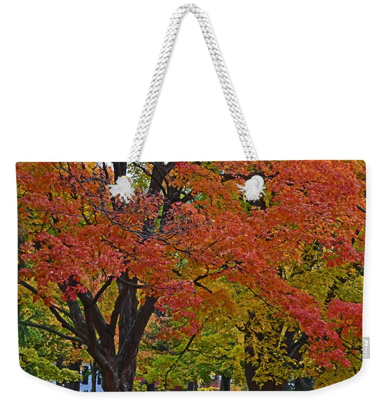 Trees Weekender Tote Bag featuring the photograph Park Bench by Maria Keady