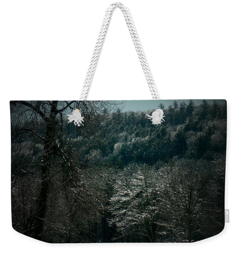 Forest Weekender Tote Bag featuring the photograph Parks Winter Glory by Gail Schmiedlin