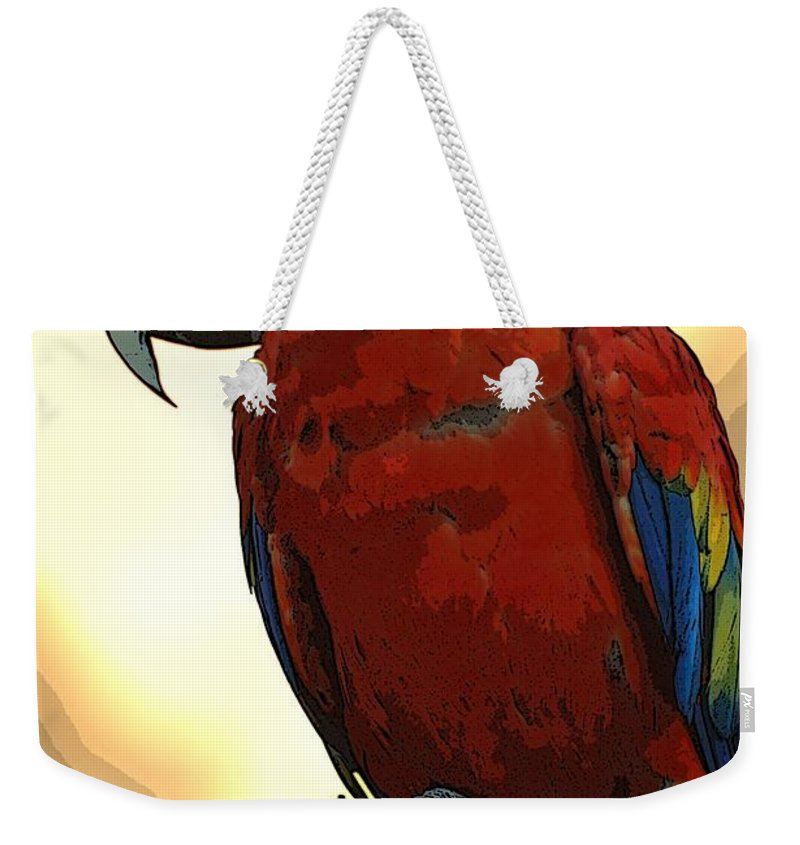 Animals Weekender Tote Bag featuring the photograph Parrot Watching by Norman Andrus