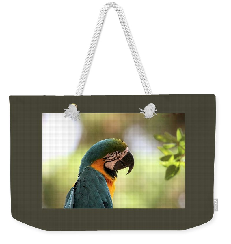 Parrot Weekender Tote Bag featuring the digital art Parrot's Eye by Frederick Holiday
