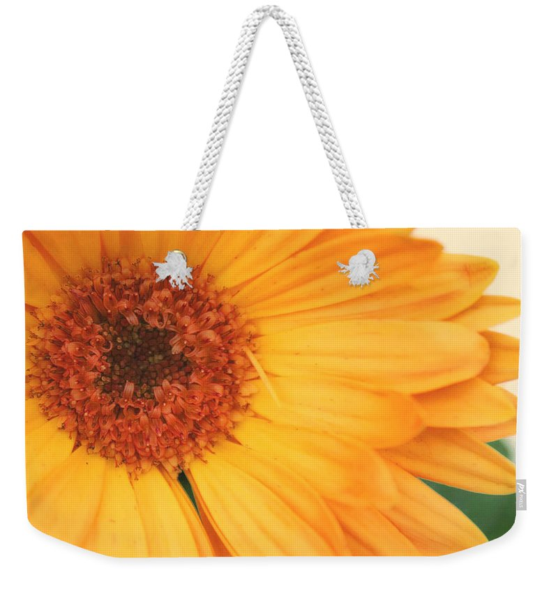 Flowers Weekender Tote Bag featuring the photograph Partly Sunny by Linda Sannuti