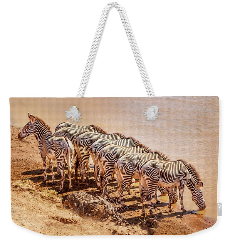 Africa Weekender Tote Bag featuring the photograph Party Of Eight 6973 by Karen Celella