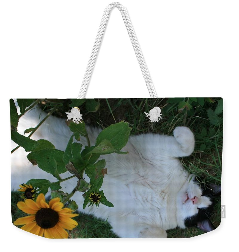 Daisies Weekender Tote Bag featuring the photograph Passed Out Under The Daisies by Marna Edwards Flavell