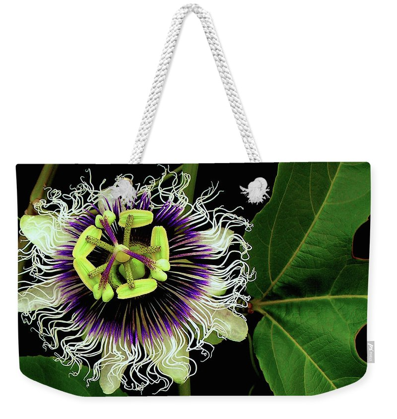 Hawaii Iphone Cases Weekender Tote Bag featuring the photograph Passion Flower by James Temple