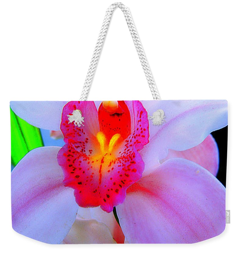 Clay Weekender Tote Bag featuring the photograph Pastel Pagentry by Clayton Bruster