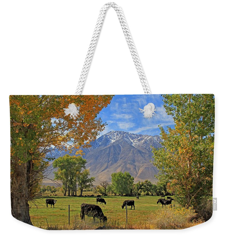 Gardnerville Weekender Tote Bag featuring the photograph Pasture With A View by Donna Kennedy