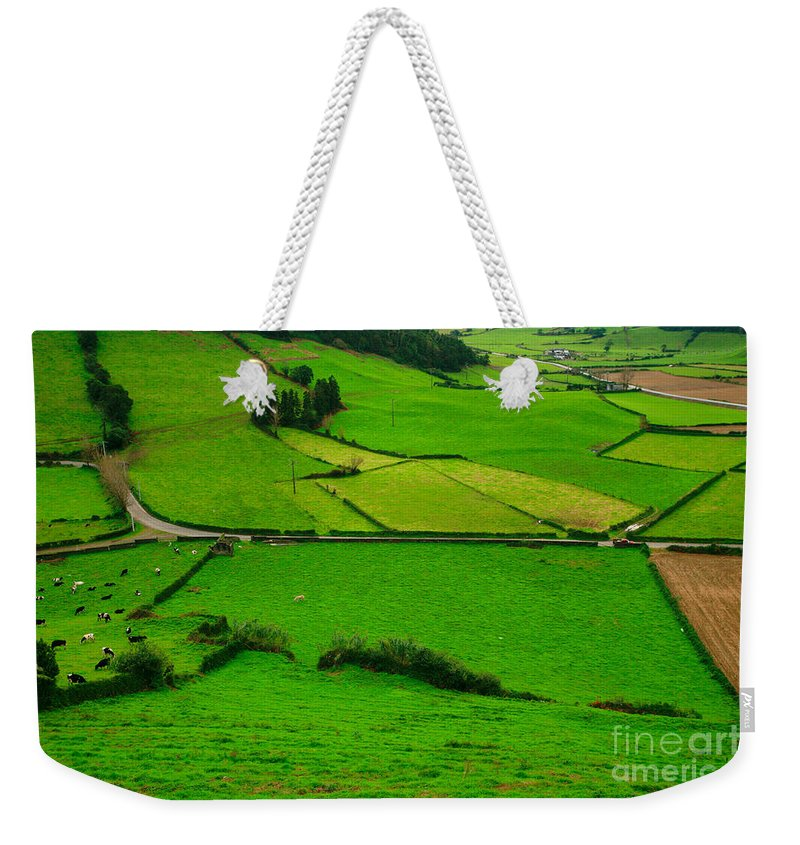 Dairy Weekender Tote Bag featuring the photograph Pastures In The Azores by Gaspar Avila