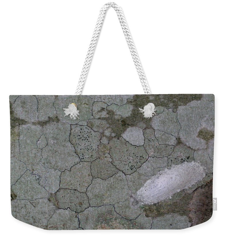 Grey Weekender Tote Bag featuring the photograph Patches Of Grey And Life by Douglas Barnett