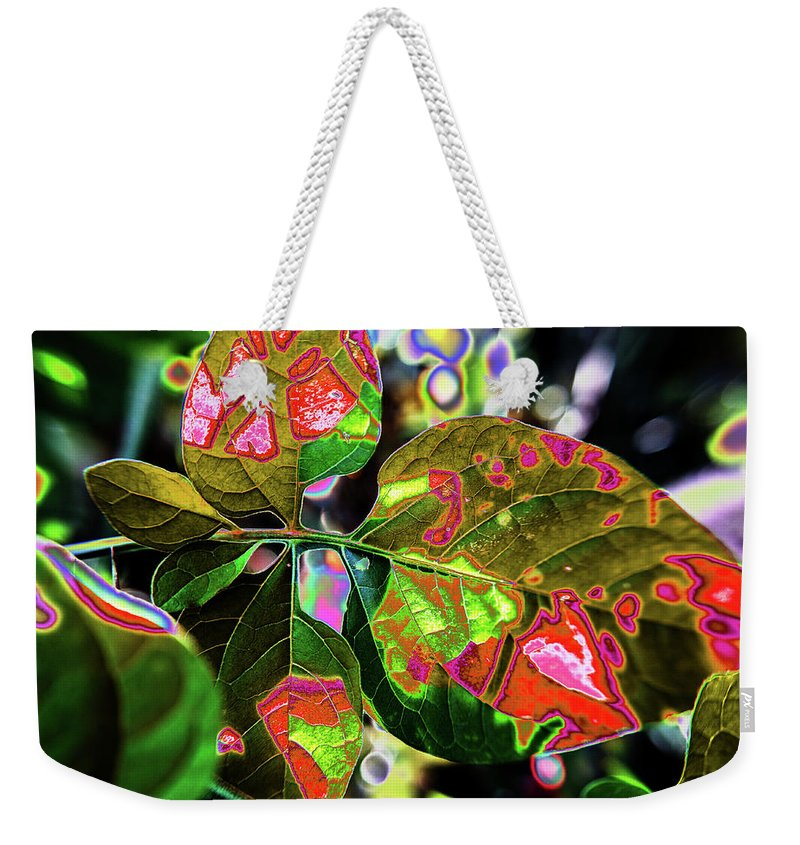 Leaves Weekender Tote Bag featuring the photograph Patchwork by Alexandra Nielsen