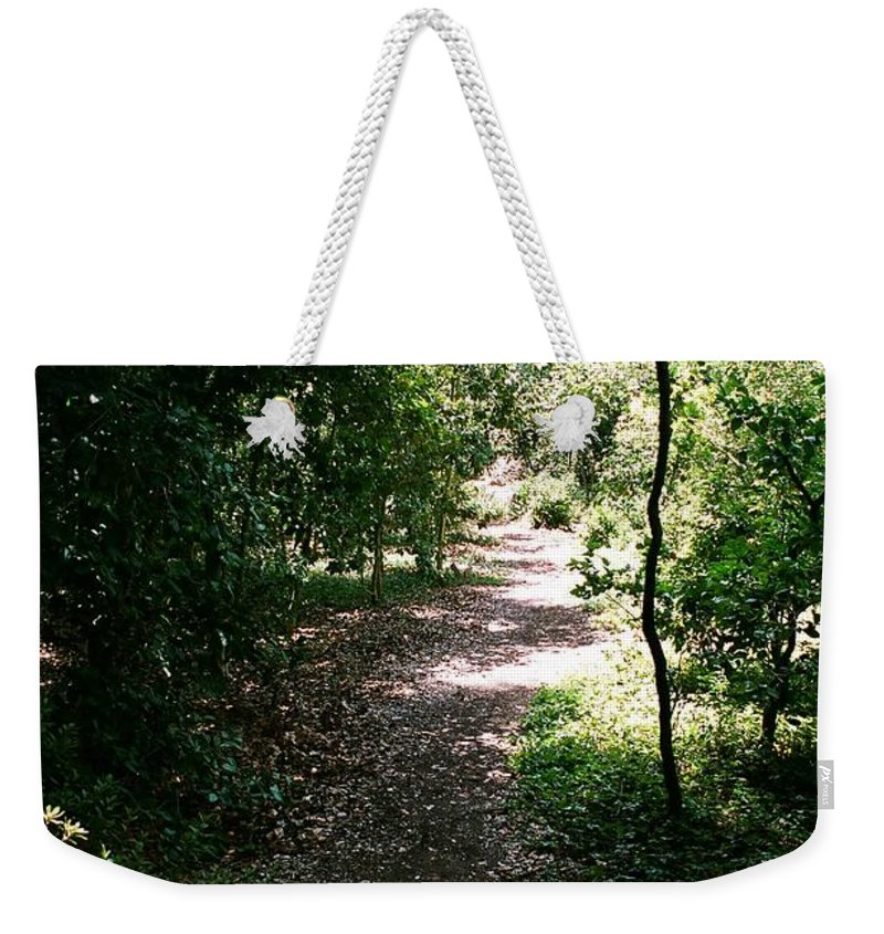 Path Weekender Tote Bag featuring the photograph Path by Dean Triolo