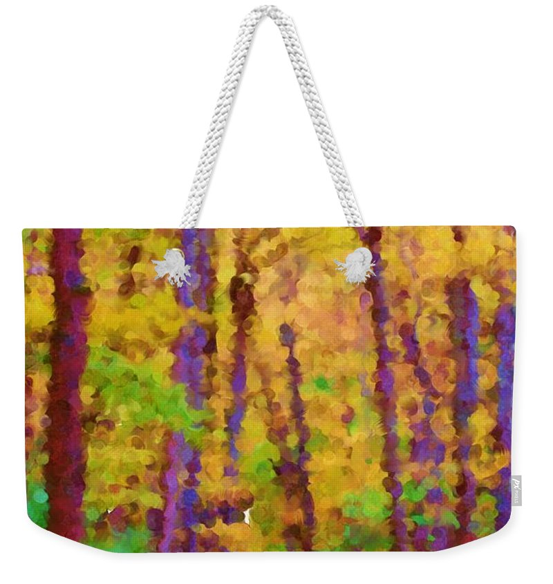 Digital Photograph Weekender Tote Bag featuring the photograph Path In The Woods by David Lane