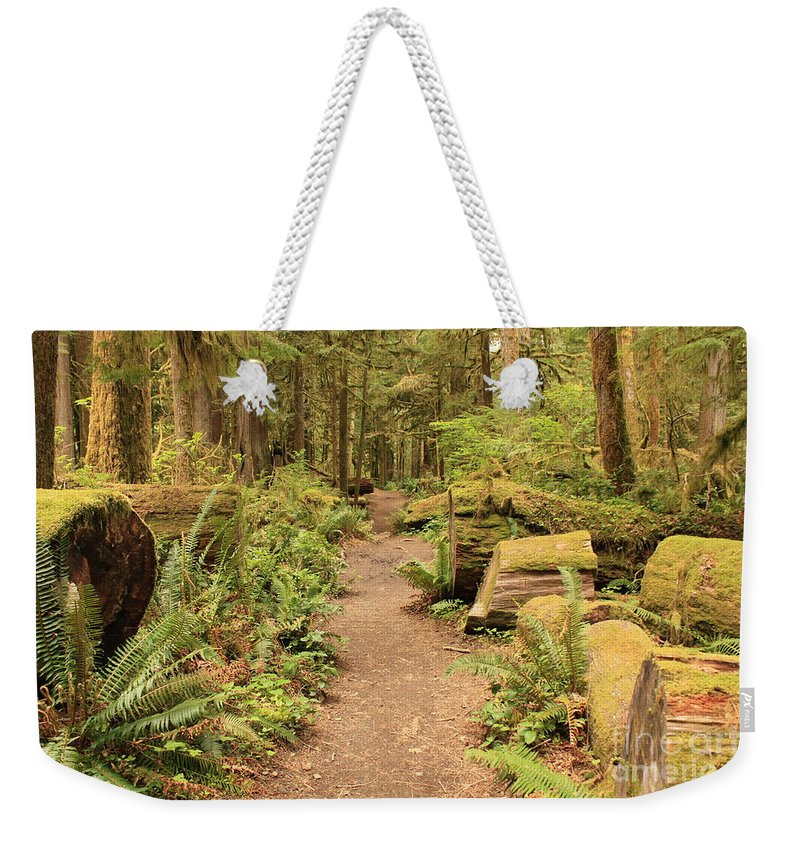 Lake Crescent Weekender Tote Bag featuring the photograph Path Through Mossy Forest by Carol Groenen