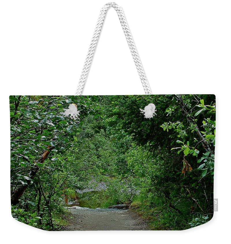 Path Weekender Tote Bag featuring the photograph Path To Adventure by Diana Hatcher