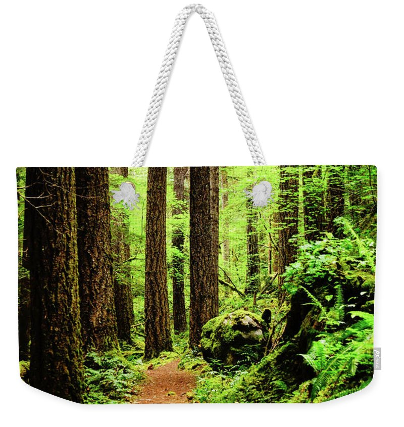 Woods Weekender Tote Bag featuring the photograph Path To Peace by Tim Dussault