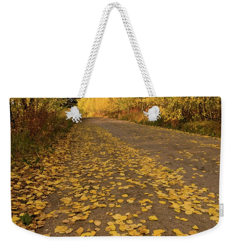 Grand Teton Weekender Tote Bag featuring the photograph Paved In Gold by Steve Stuller