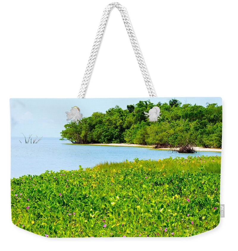 Pavilion Key Weekender Tote Bag featuring the photograph Pavilion Point by Marilee Noland