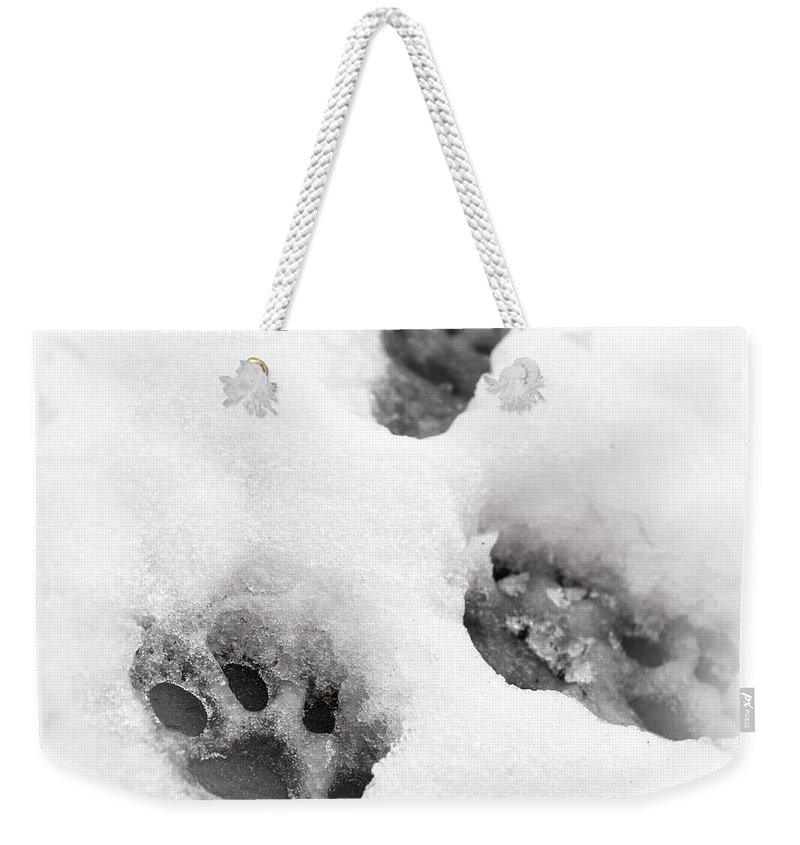 Animal Weekender Tote Bag featuring the photograph Paw print by Tom Gowanlock