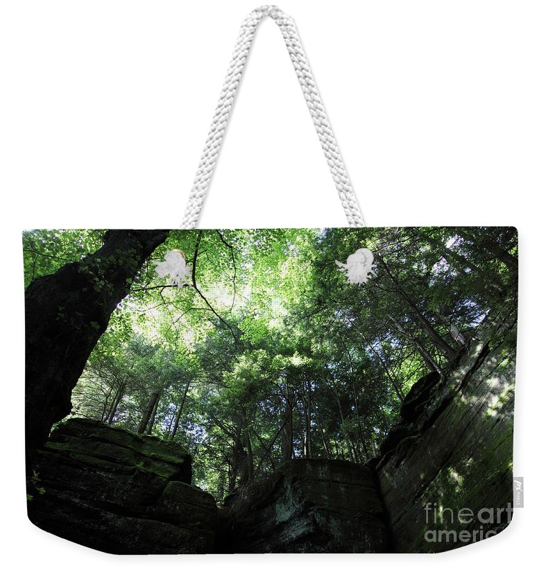 Nature Weekender Tote Bag featuring the photograph Peace All Around by Amanda Barcon