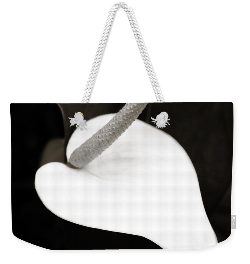 Peace Lily Weekender Tote Bag featuring the photograph Peace And Love by Marilyn Hunt