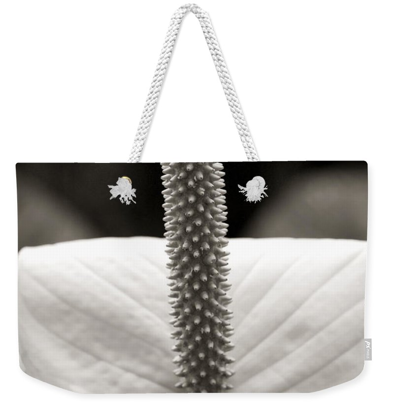 Flower Weekender Tote Bag featuring the photograph Peace Lily by Marilyn Hunt