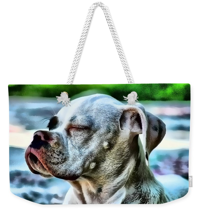 Dog Weekender Tote Bag featuring the digital art Peace Of Mind by Kathy Tarochione