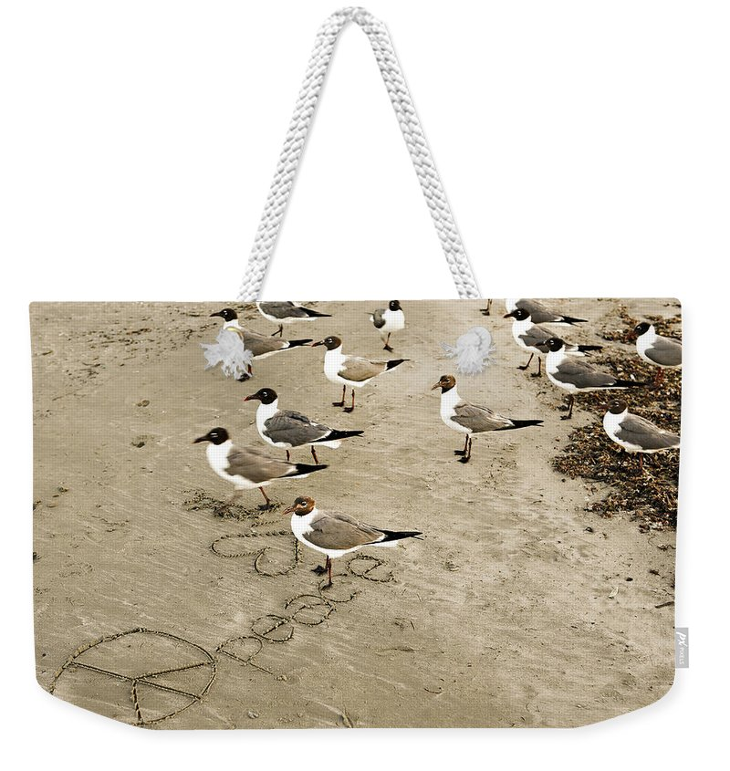 Americana Weekender Tote Bag featuring the photograph Peace On The Beach by Marilyn Hunt