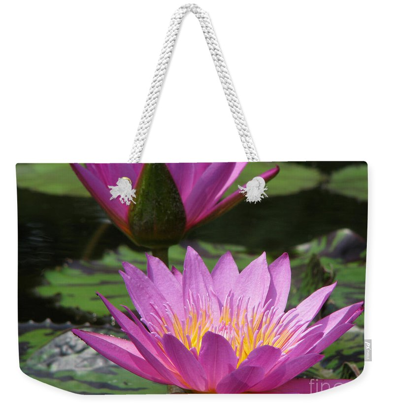 Lillypad Weekender Tote Bag featuring the photograph Peaceful by Amanda Barcon